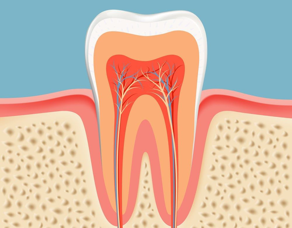Root Canal - Alameda Dental Care in Tempe, AZ